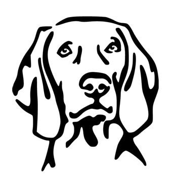 Dog Image Example