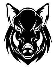 Hog Image Example