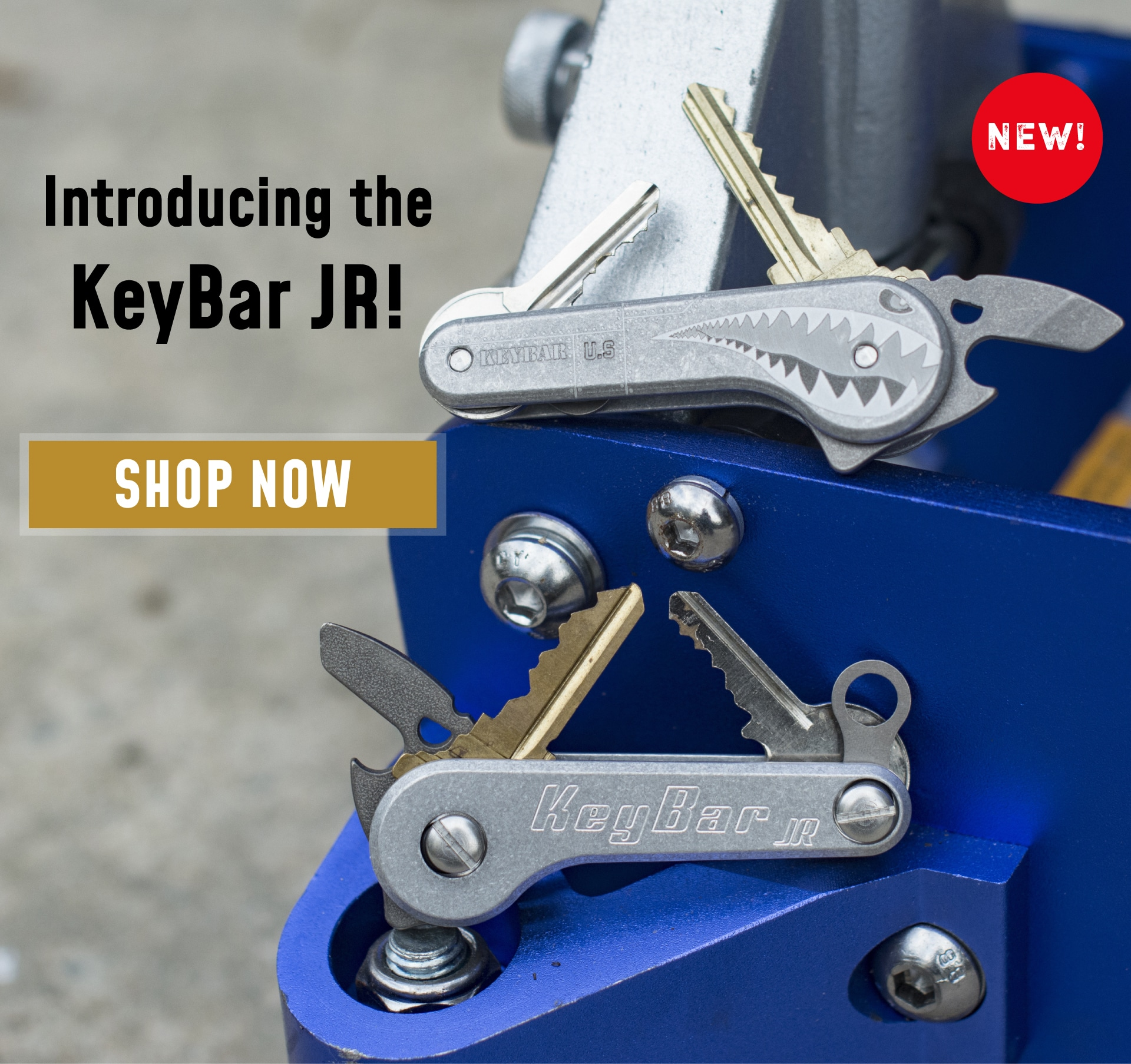 Homepage-Mobile-Image-KeyBar-JR-Intro